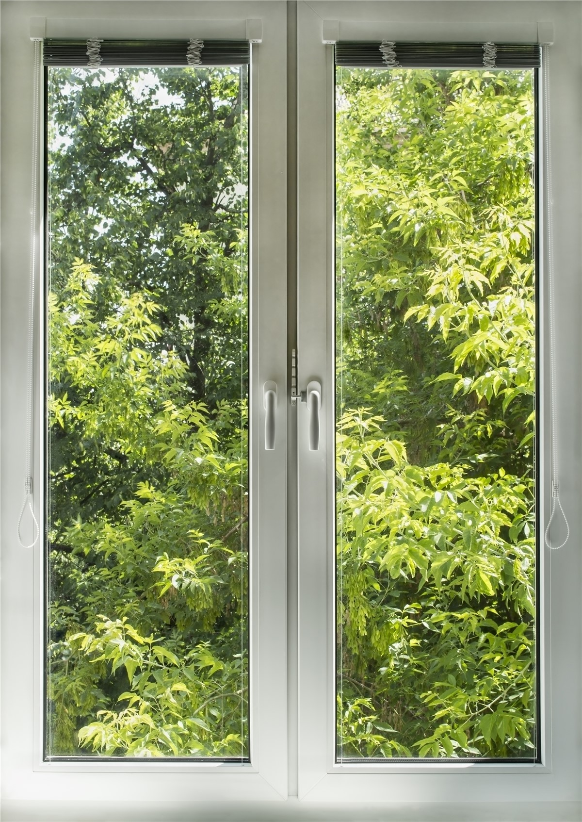 Casement window cheap american craftsman in x in double for Cheap window replacement