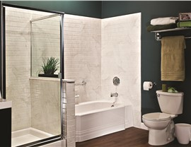 Bathroom Remodel - Acrylic Wall Systems Photo 3