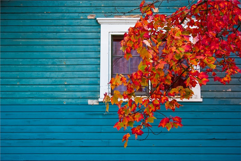 Why You Should Replace Your Siding This Fall
