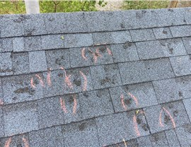 Commercial Hail Damage Photo 1
