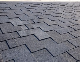 Roofing Styles - Asphalt Shingle Roof Photo 3