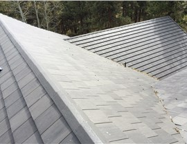 Roofing Styles - Asphalt Shingle Roof Photo 1