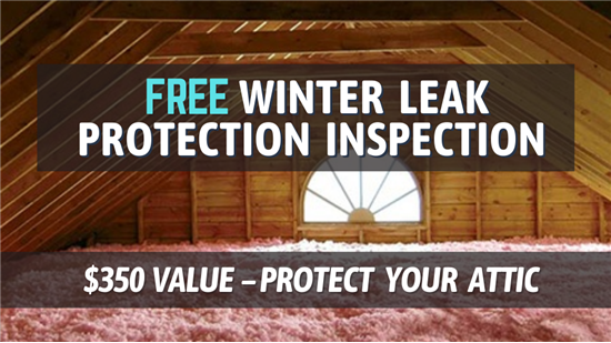 Free Winter Leak Protection Inspection