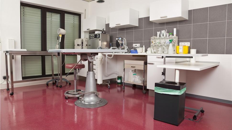 Commercial Floor Coatings - Veterinary Clinics Photo 1
