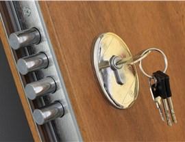 Security Doors Photo 3