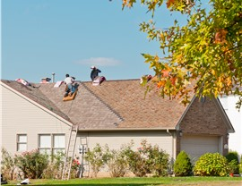 Roofing - Contractor