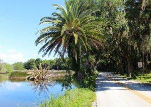 road in palmetto florida