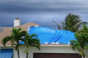 storm damage on roof covered with blue tarp