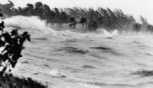 black and white storm waves crashing