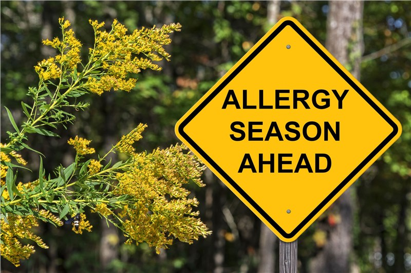 caution sign for allergies ahead