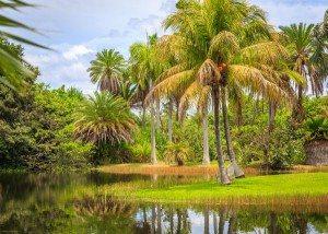 fairchild-tropical-gardens