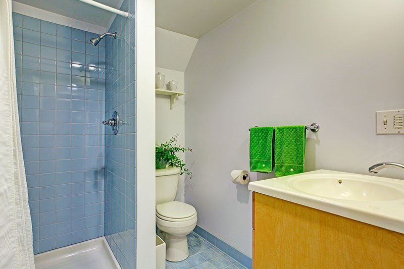 Time to Convert Your Shower to a Tub: Walk-In Tub Edition
