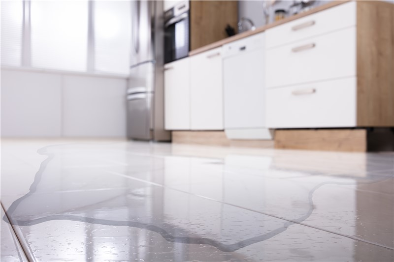 What Can You Expect From the Water Damage Restoration Process?