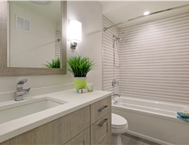 Bathroom Remodeling - Bath Wall Surrounds Photo 1