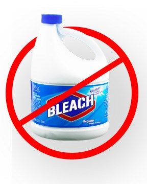 Mold Myth: Bleach DOES NOT kill mold