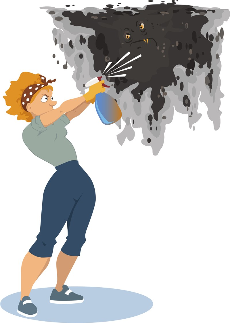 Why You Can't Handle Mold Removal Yourself- Hire Professionals to Inspect Your Home
