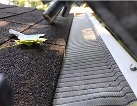 Gutter 2 (Before & After) Photo 1