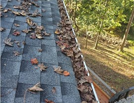 Gutter 5 (Before & After) Photo 3