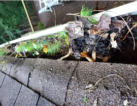 Gutter 8 (Before & After) Photo 3
