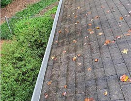 Gutter 14 (Before & After) Photo 1