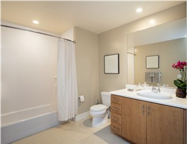 Bathtubs - Bathtub Surrounds Photo 2