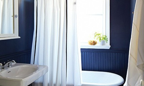 blue accent wall in bathroom