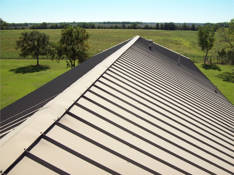 Here's Why a Metal Roof is a Great Choice for Your Home