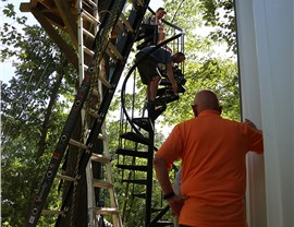 Antonio Brown Treehouse: Week 7-12 Photo 1