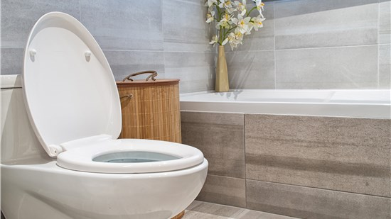 HOLIDAY SAVINGS: $500 off + FREE Toilet!*