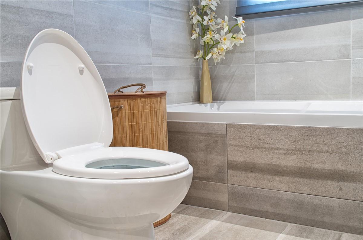 Toilets | Local Bathroom Remodelers | Matrix Bath Systems