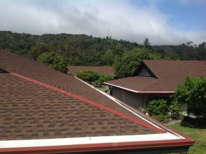 Mr. Roofing Sequoia Project after shot
