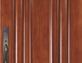 Doors Photo 10
