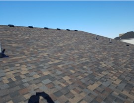 Popular Designer Black Sable by NMC; New Roof in Maple Grove