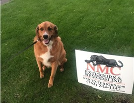 NMC's pup-crew all give paws-ups for NMC yard signs