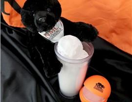 NMC Black Panther Mascot Photo 1