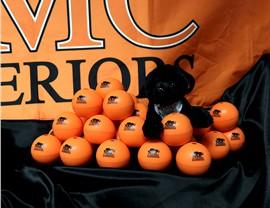 NMC Black Panther Mascot Photo 2