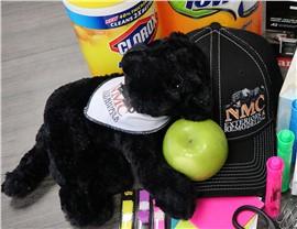 NMC Black Panther Mascot Photo 3