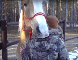 NMC supports Rising Hope and their Equine Therapy Program