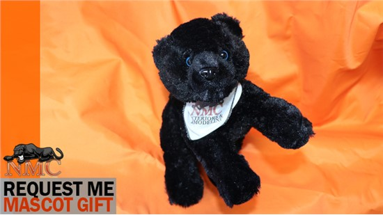 Get Your NMC Stuffed Panther Mascot Gift from NMC