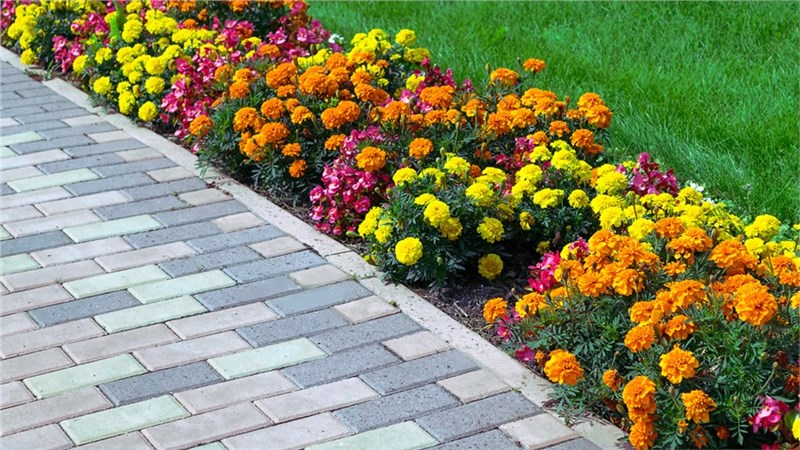 Add Value to Your Home with Attractive Back Patio Pavers