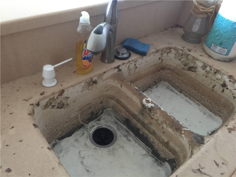 Mold Remediation: How to Spot Mold Before It Takes Over Your Home