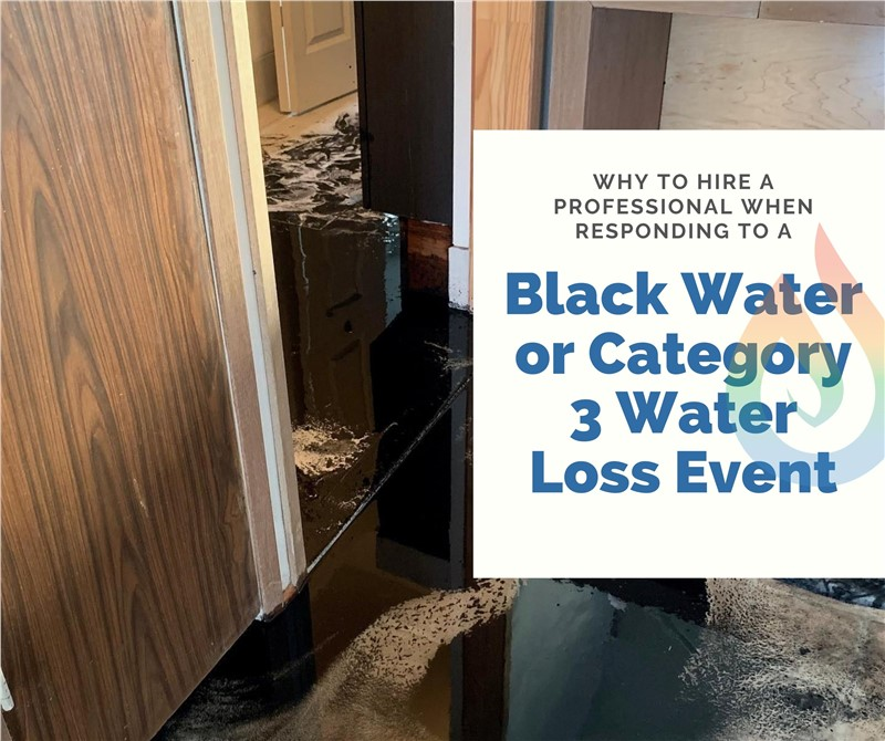 Why You Should Hire a Professional when Responding to a Black Water Event