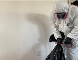 Mold Removal & Remediation Photo 2