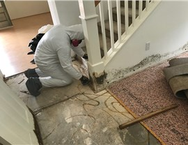 Residential Services - Mold Removal Photo 3