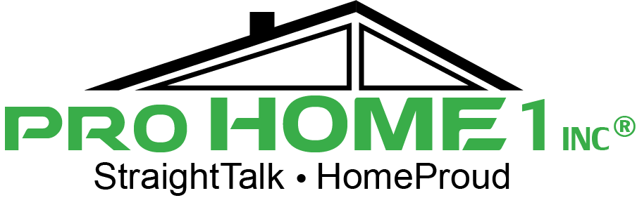 Pro Home 1