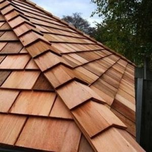 common roof issues south florida