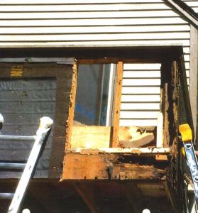 Termite Siding Damage