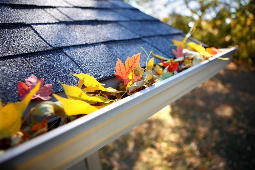 FREE Premium Gutter Protection System! **$2,000 Value**