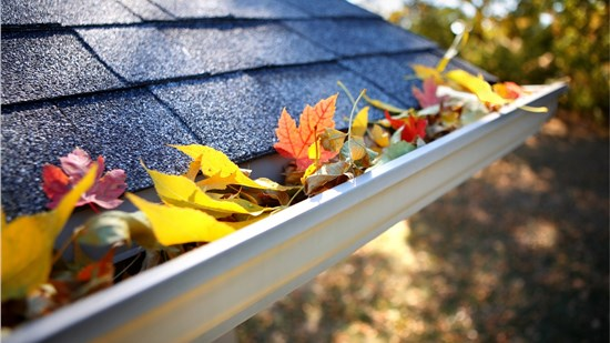 50% OFF Gutters, Downspouts and Gutter Protection