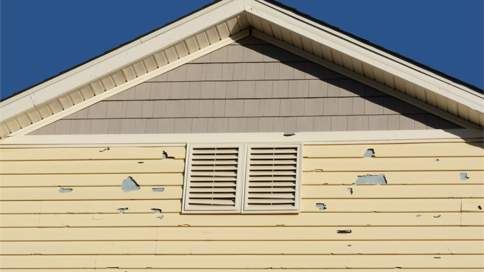 Siding - Repair Photo 1